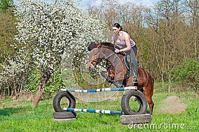 Equestrian - Horse Jumping