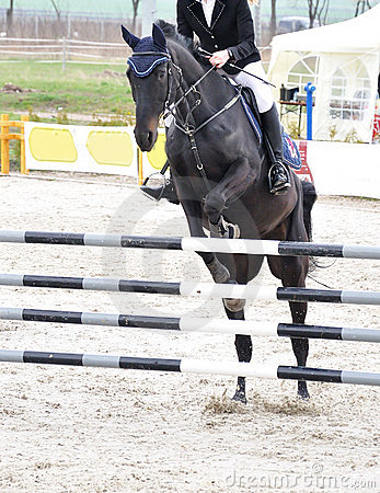 Equestrian jumping on black horse