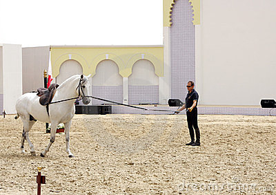 Equestrian performs on March 23, 2012 in Bahrain Editorial Stock Photo