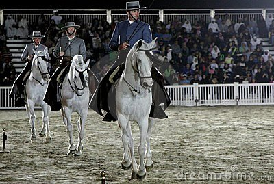 Equestrian performs on March 26, 2012 in Bahrain Editorial Stock Photo