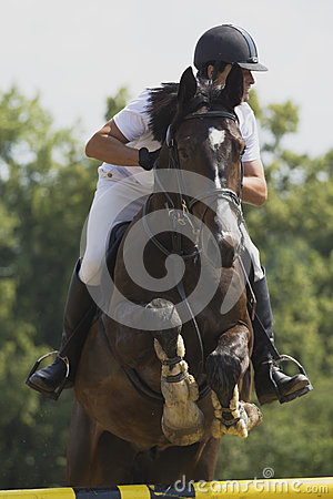 Equestrian race Editorial Stock Image