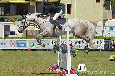 Equestrian Show Jumping Editorial Photo