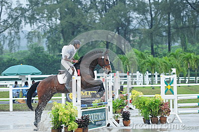 Equestrian showjumping - STC Horse Show 2013 Editorial Photo
