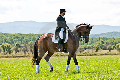 Equestrian sport. Female dressage rider Editorial Stock Photo