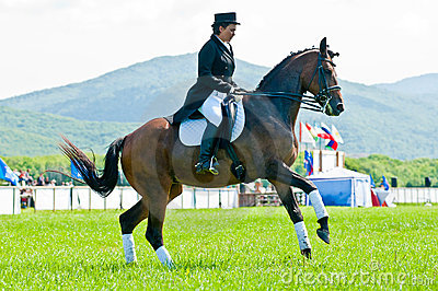 Equestrian sport. Female dressage rider Editorial Photo