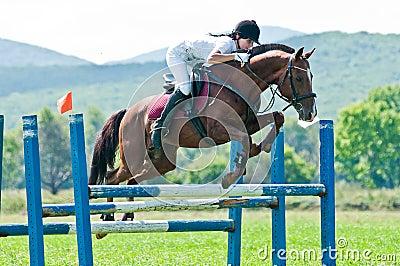 Equestrian sport. female rider show jumps