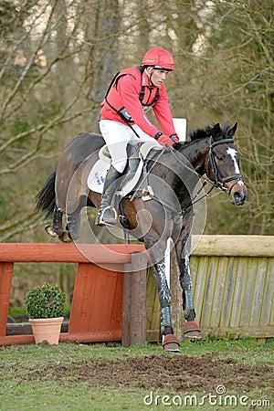 Equestrian sport: horse jumping