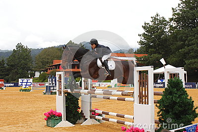 Equestrian sport I