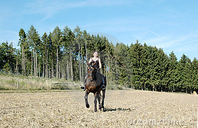 Equestrienne et cheval. Hanoverian.