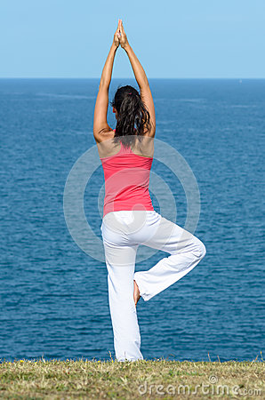 Free Equilibrium And Sea Royalty Free Stock Photography - 26444587