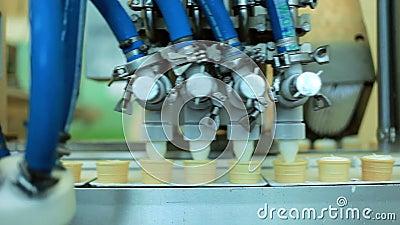 Equipamento da transformação de produtos alimentares Cones do waffle que enchem-se com o gelado Linha de produção video estoque
