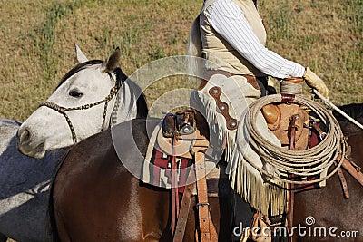 Equipamento do cowboy