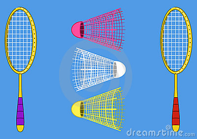 Equipment for the badminton