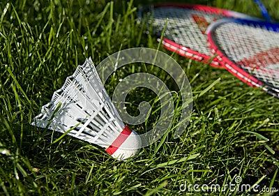 Equipment for badminton