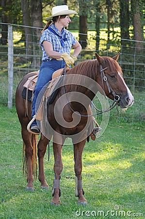 Equitação ocidental Foto Editorial