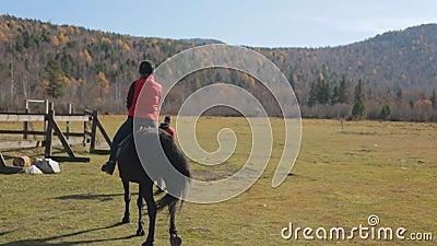 Equitation trener prowadzi konia na smyczu z żeńskim dżokeja obsiadaniem w comberze zbiory