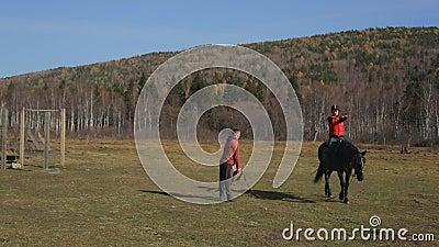 Equitation trener prowadzi konia w okręgu z beginner w comberze zbiory wideo