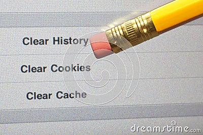 Erase Web History