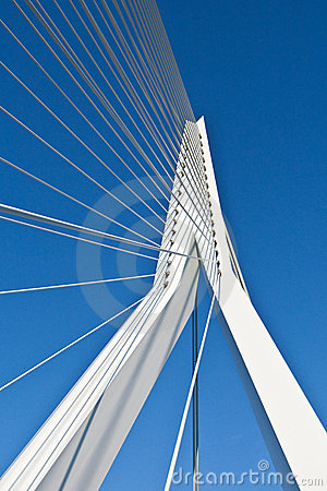 Erasmus Bridge Editorial Stock Image