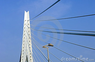 Erasmus Bridge Detail Editorial Photography