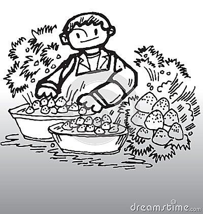 Erdbeere und Junge