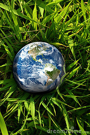 Erde verloren im Gras