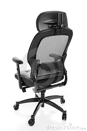 Ergonomic Office Chair Rear