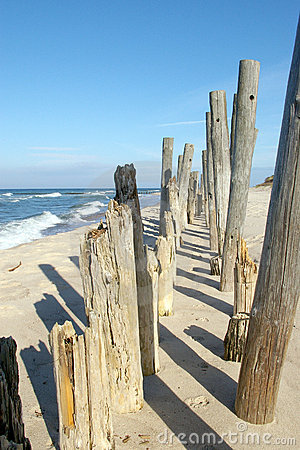 Eroded poles on beach.