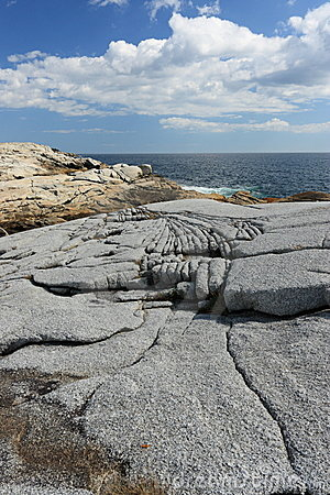 Eroding granite coastline