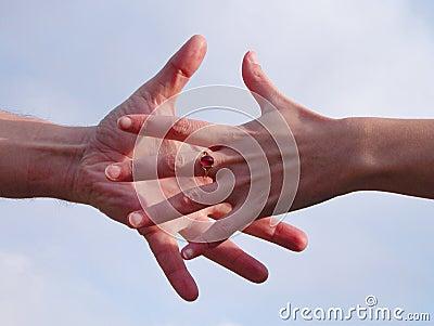 Erreichen der Hände