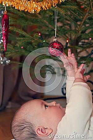 Erste Weihnachtsfreude