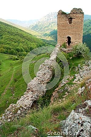 Escúdese la ruina en la tapa de la colina, fortaleza vieja en el bosque