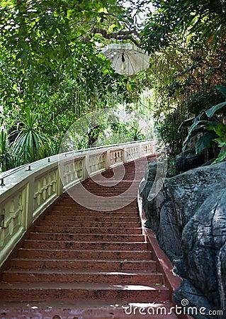 Escadas à montagem dourada