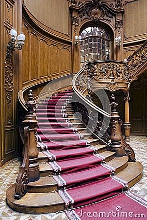 Escaleras con la tira de la alfombra