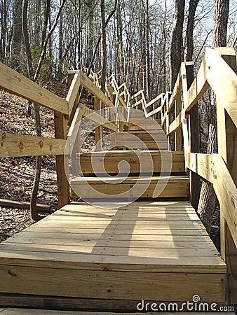 Escaleras que suben