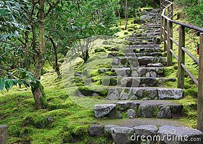 Escalier De Jardin En Pierre escalier de jardin en pierre. awesome charmant revetement exterieur