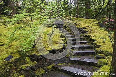 Escalier en pierre dans un jardin photo libre de droits image 30228045 - Escalier de jardin en pierre ...