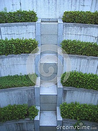 Escaliers de végétation