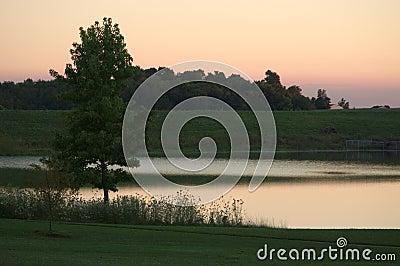 Escena del lago en la oscuridad