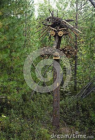 Escultura de madera de ganchos de tocones y de ramas en - Tocones de madera ...