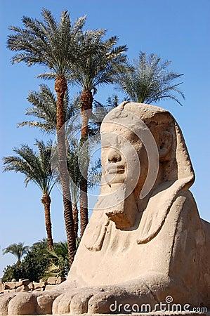 Esfinge, Luxor