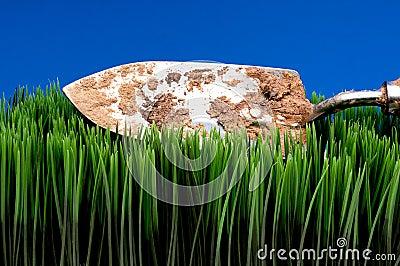 Espada de jardín sucia en hierba