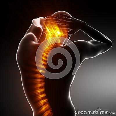 Esplorazione della spina dorsale del corpo maschio