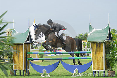Esposizione di salto equestre Fotografia Stock Editoriale
