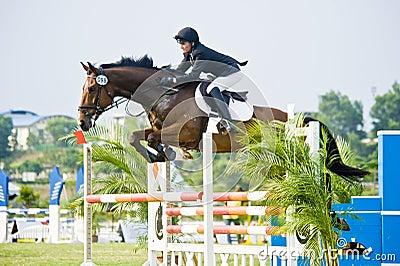 Esposizione prima di salto equestre della tazza Fotografia Editoriale