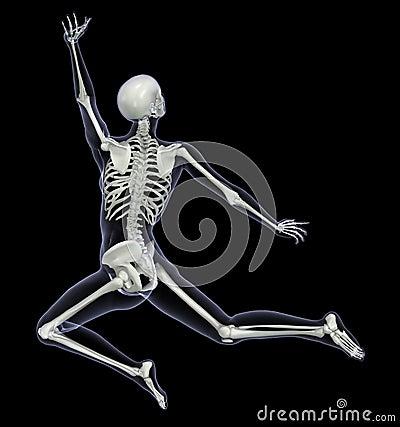 Esqueleto en el movimiento 1