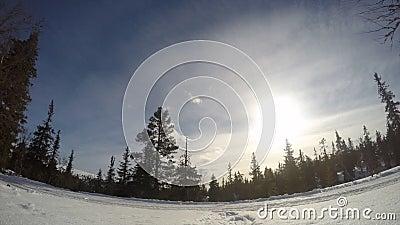 Esqui do corta-mato no tempo-lapso da Suécia video estoque