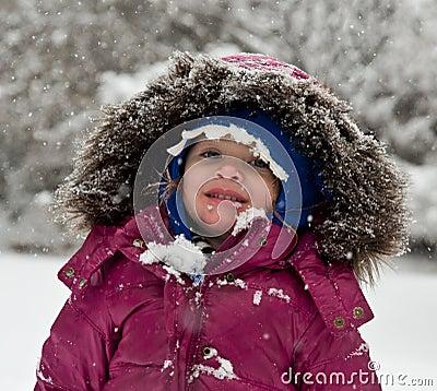 Essen der Schneeflocken