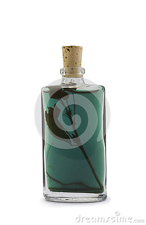 Essence Bottle