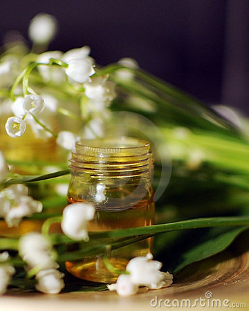 Free Essential Oil For Aromatherapy Stock Photography - 19413302